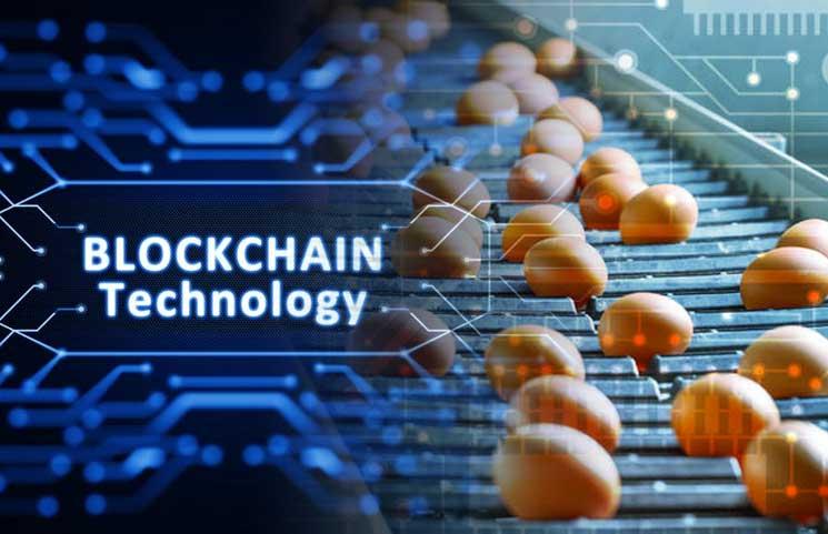 Potraviny v hodnote Až 300 biliónov USD bude do roku 2027 sledovaných pomocou Technológie Kryptomien (Blockchain)
