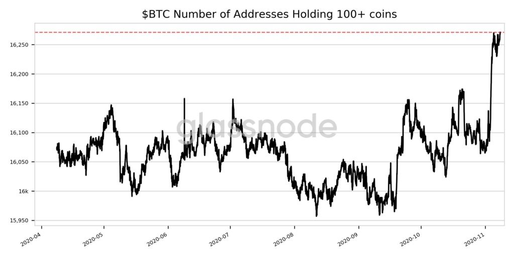 štatistika BTC 100 BTC a viac